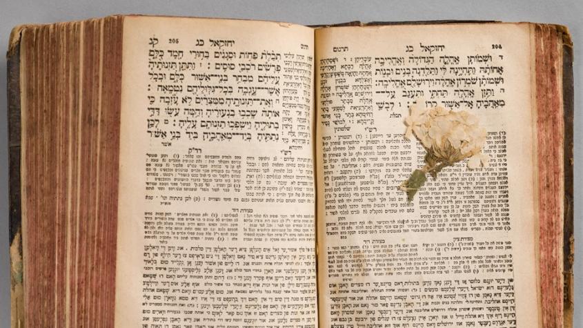 Esrim ve-arba, Jiddische Tora-Ausgabe, Literatur aus den DP-Lagern, Staatsbibliothek zu Berlin - Signatur: 4 A 44971