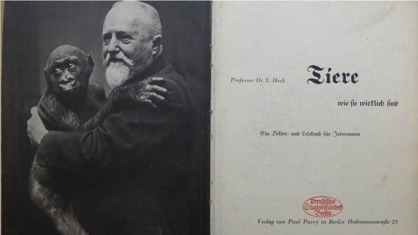 Heck - Tiere, wie sie wirklich sind. Berlin: Parey, 1934. Staatsbibliothek zu Berlin - PK. Lizenz: CC-BY-NC-SA