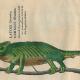 """Conrad Gessner: Icones Animalium Quadrupedum Viviparorum Et Oviparorum. Zürich: Froschauer 1553. SBB-PK: 2"""" Lk 3636."""