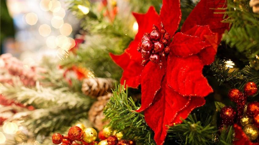 Christstern mit Weihnachtsschmuck. Foto: Jill Wellington, pixabay