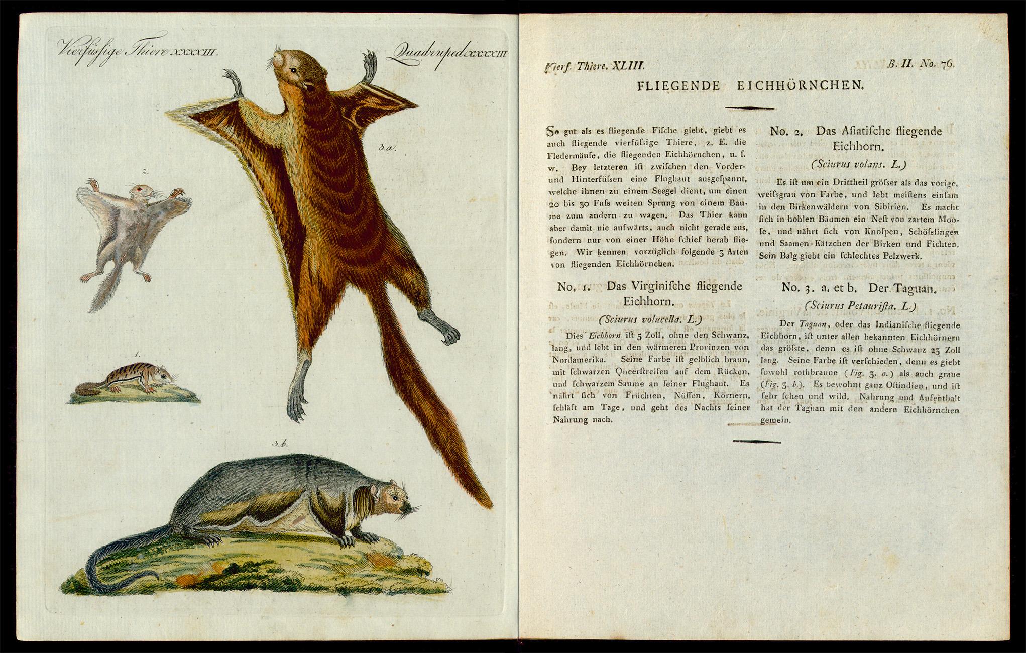 Friedrich Justin Bertuch, Bilderbuch für Kinder, B XXIII, 8-2 R, S. 314 und 315