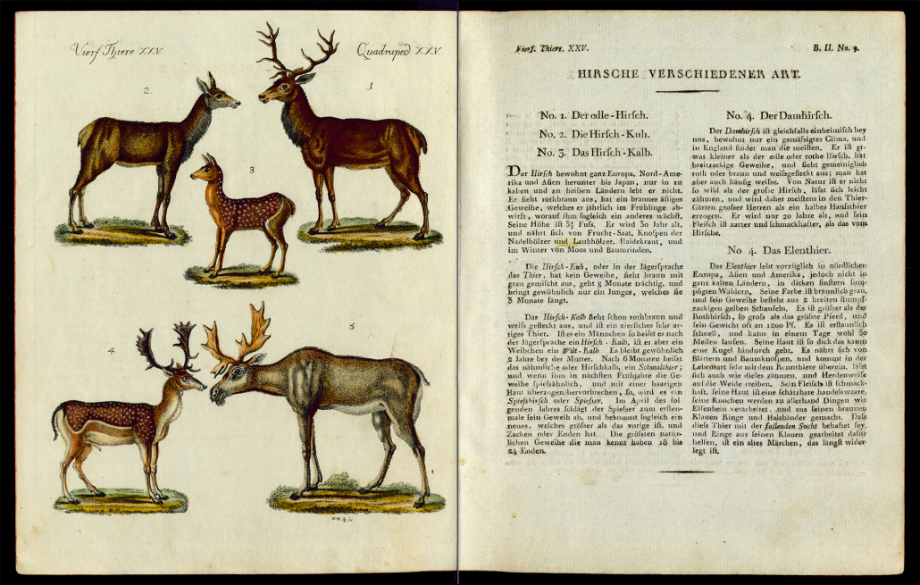 Friedrich Justin Bertuch, Bilderbuch für Kinder, B XXIII, 8-2 R, S. 44 und 45