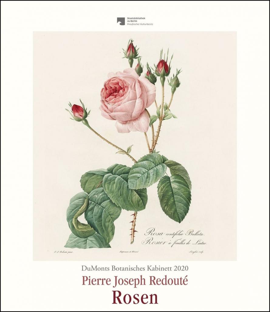 DuMonts Botanisches Kabinett 2020 - Rosen