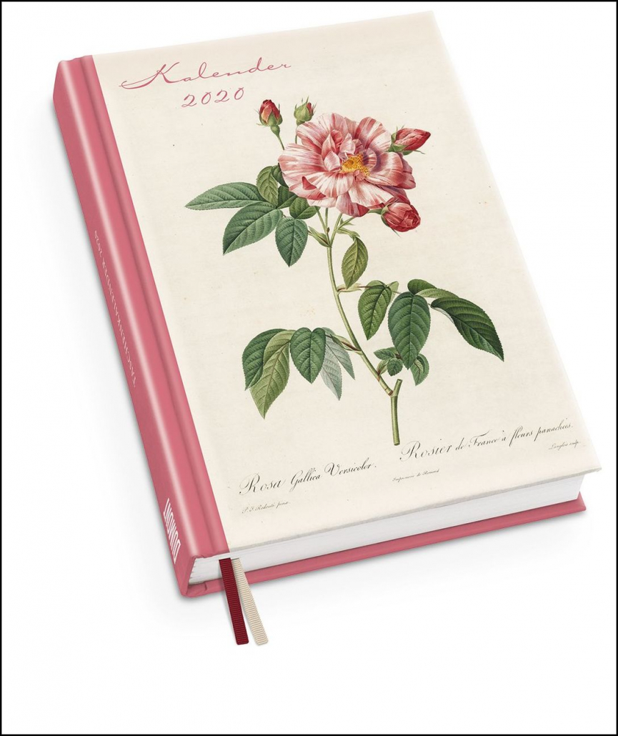 Taschenkalender - Redoutés Rosen
