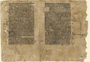 Schinnagel, Prognostikon 1489