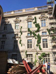 Ansicht der Fassade mit wildem Wein